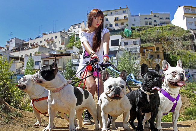 Girl-Walking-With-Bulldogs french