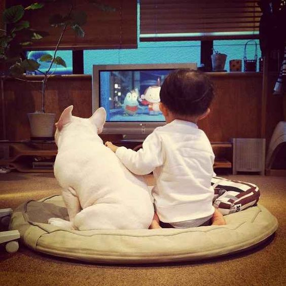 french bulldog and kids sitting