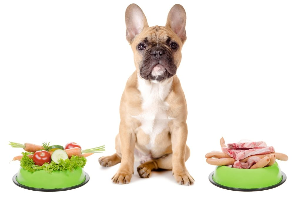 diet for a french bulldog