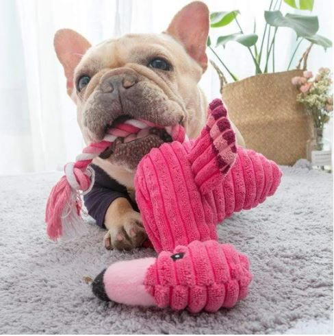 french bulldog toys
