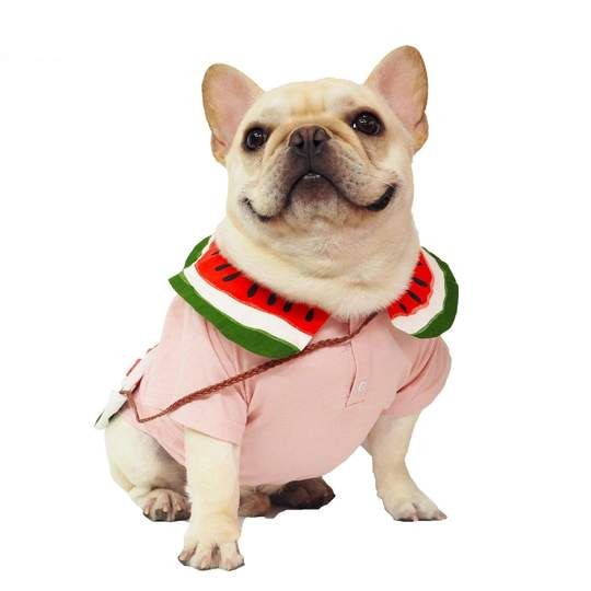 french bulldog shirts for dogs